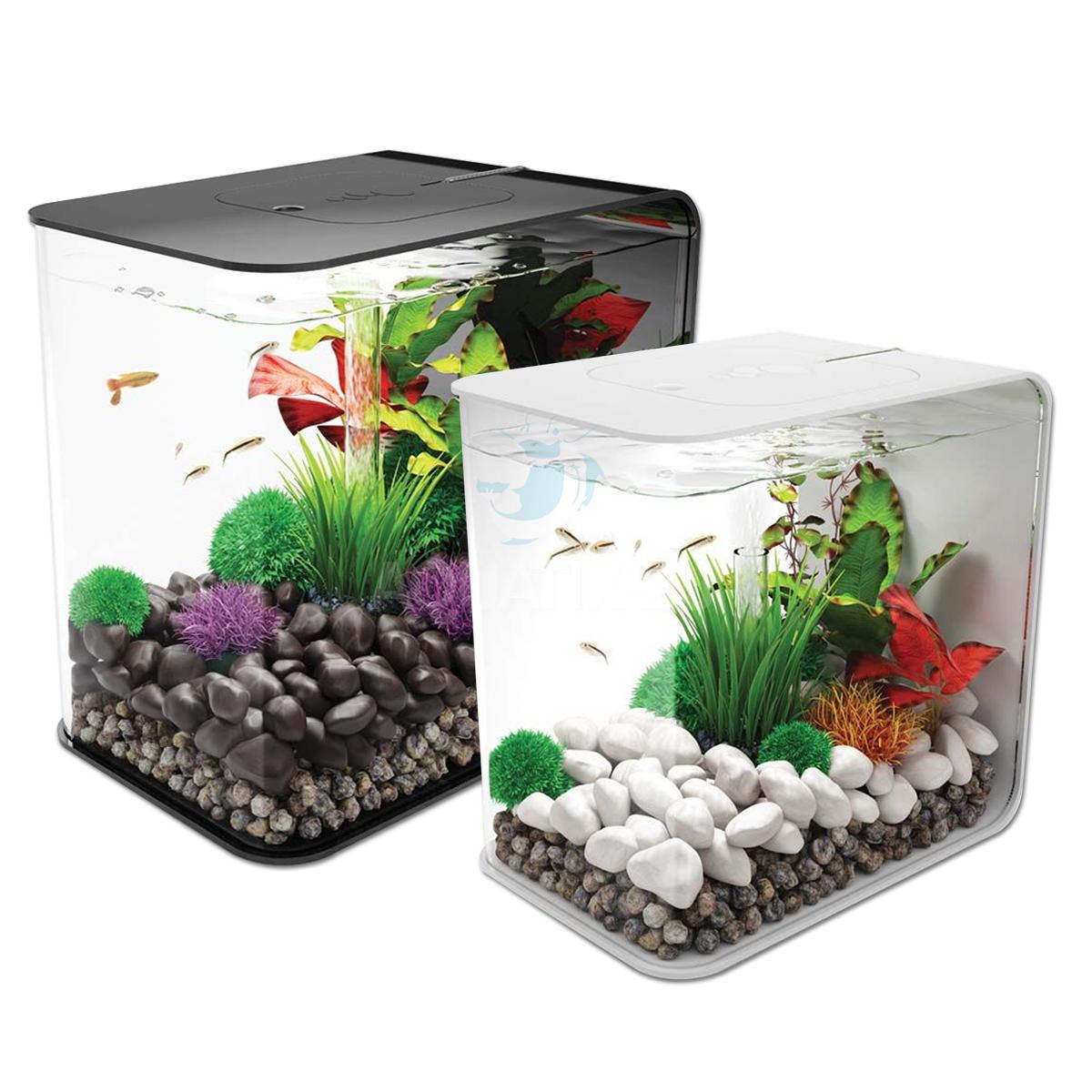 Cabinet aquarium fish tank tropical 60cm 2ft 100l - Biorb Flow Aquarium All In One Fish Tank Kit With Filter Led Lighting 15l 30l