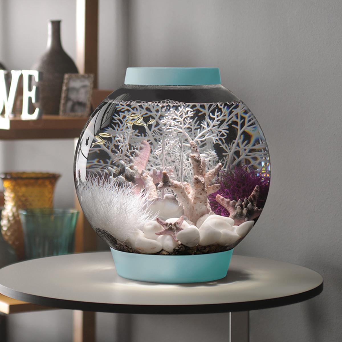 Cabinet aquarium fish tank tropical 60cm 2ft 100l - Baby Biorb 15 Litre Baby Blue Aquarium Led Lighting Acrylic Fish Tank Bowl Setup