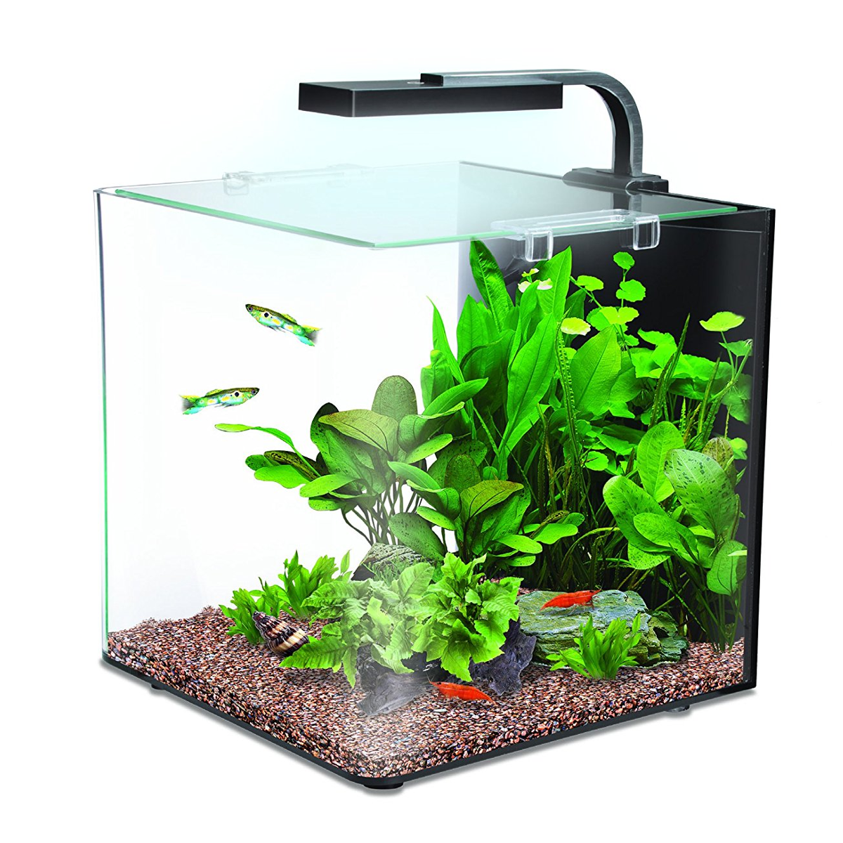 complete interpet nano led 12 litre aquarium fish tank tropical starter kit set. Black Bedroom Furniture Sets. Home Design Ideas