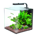 Interpet Nano LED 12 Litres - Complete Aquarium Kit