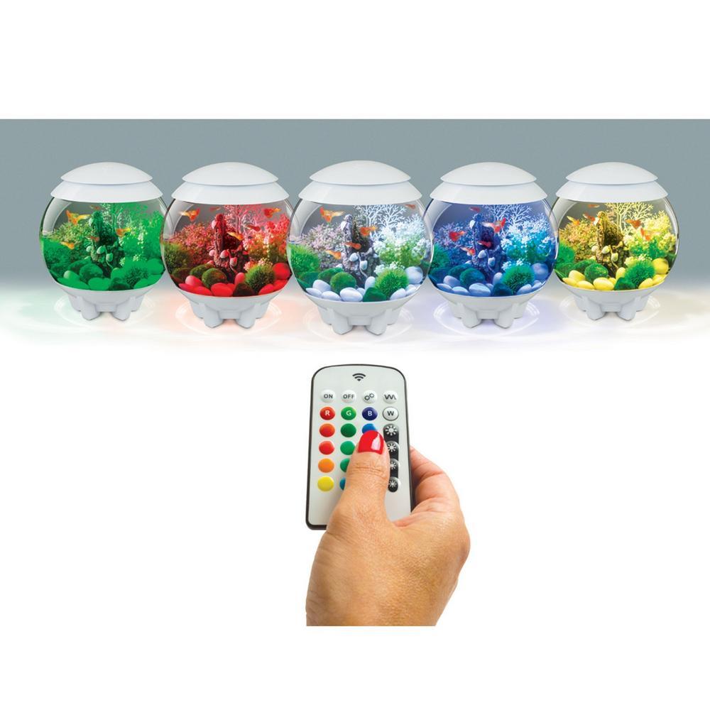 Oase biorb halo aquarium mcr led light upgrade kits for Aquarium decoration kits