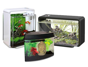 Aquariums and Decorations