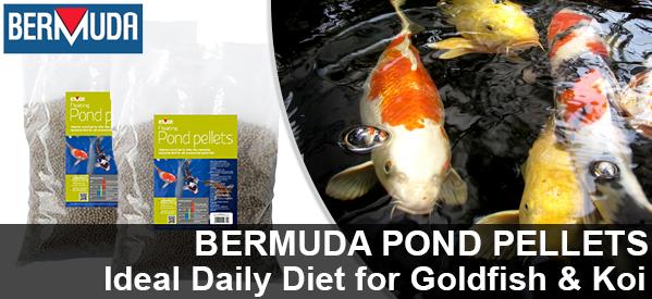 Bermuda Pond Pellets