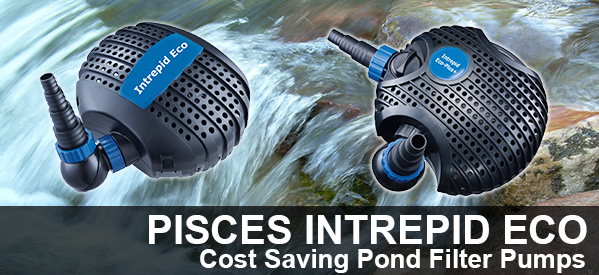 Pisces Intrepid Eco