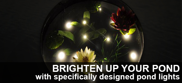 Light Up Your Pond In Style