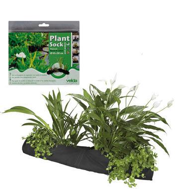 Velda Plant Socks