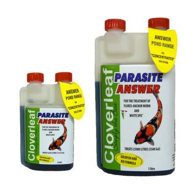 Cloverleaf Parasite Answer Koi Treatment
