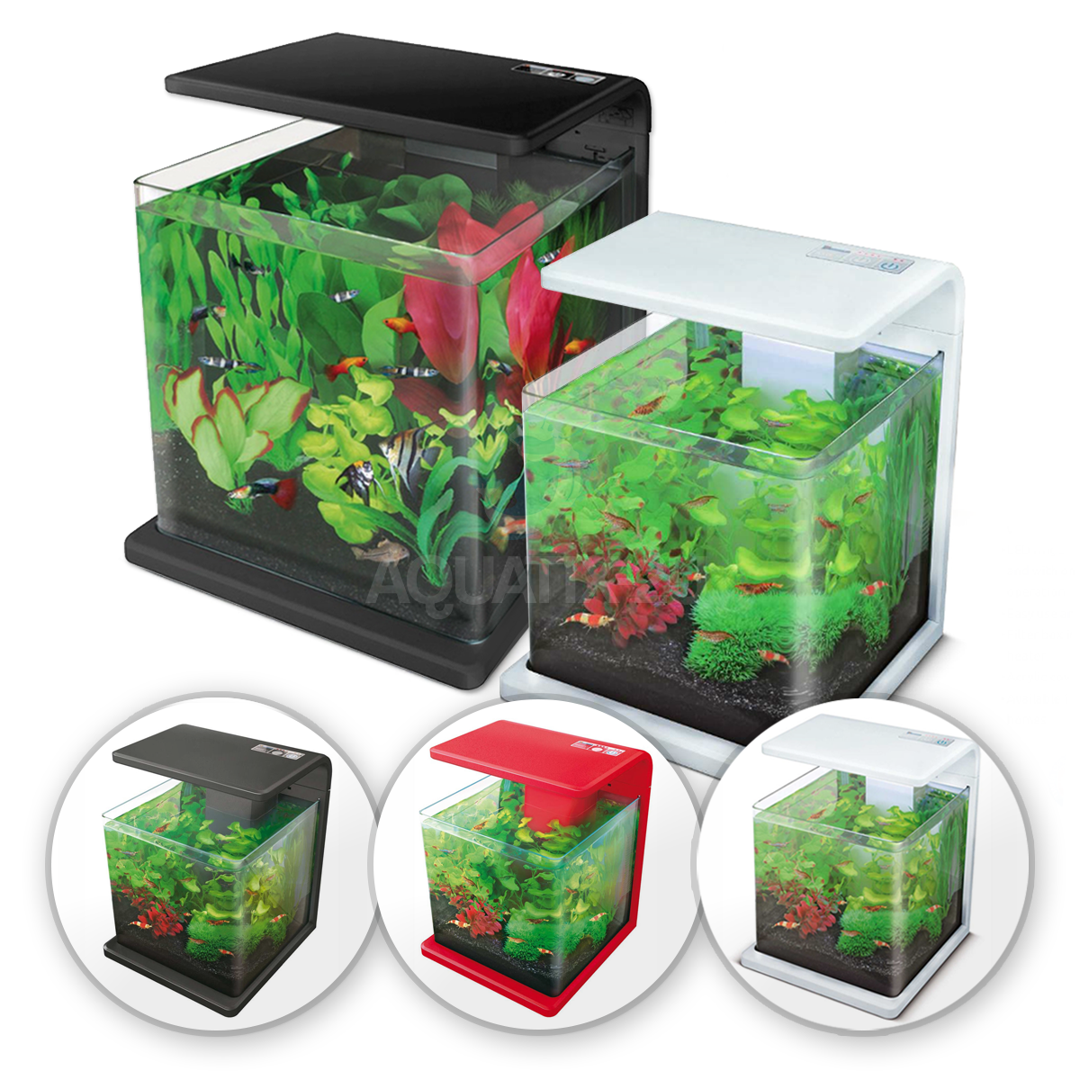 Superfish aquarium fish tank aqua 60 - Superfish Wave Aquarium 15l 30l Glass Fish Tank Complete With Lights And Filter