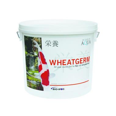 Evolution Aqua Wheatgerm Small Pellet Food - 2kg