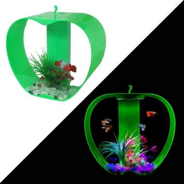 iWish Mini Apple Aquarium (25L) - Cleair