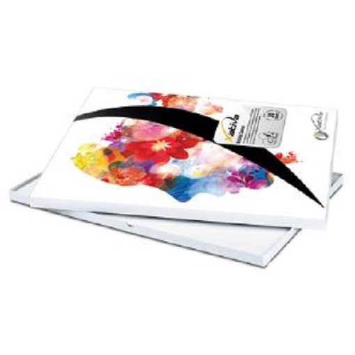 Lustre papier photos a3 50 feuilles 260gsm epson stylus for Lustre en papier