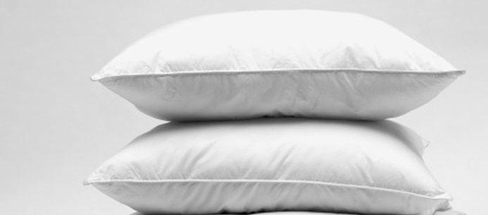 lot 2 oreillers en plumes de canard et duvet neufs. Black Bedroom Furniture Sets. Home Design Ideas