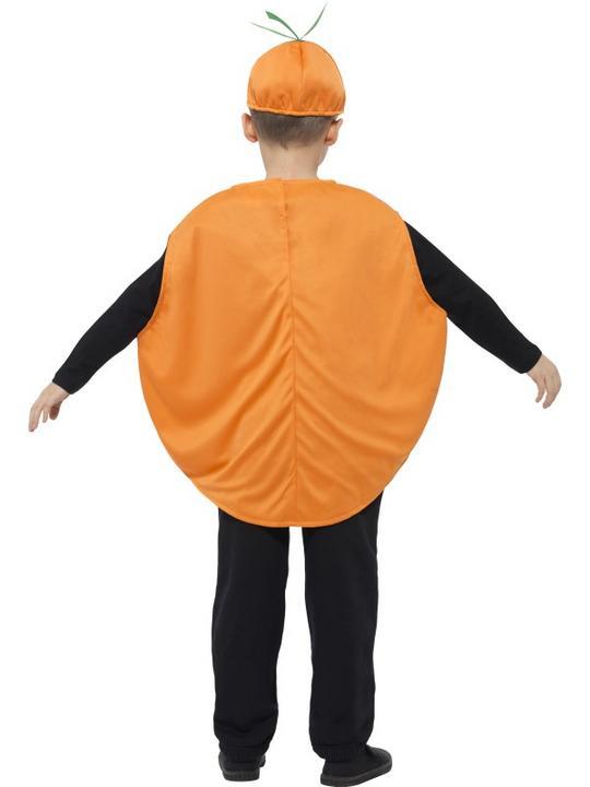Roald Dahl James & The Giant Peach Costume Thumbnail 3
