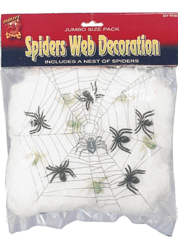 Spider Web and Spiders
