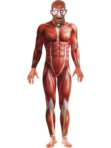 Anatomy Man Fancy Dress Costume Thumbnail 1