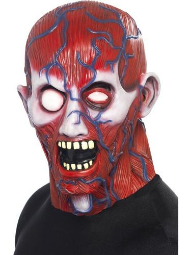 Anatomy Man Fancy Dress Mask Thumbnail 1