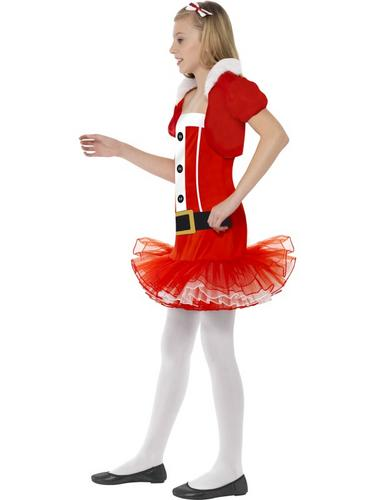 Little Miss Santa Tutu Fancy Dress Costume Thumbnail 3
