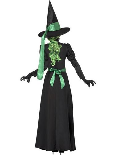 Wicked Witch Fancy Dress Costume Thumbnail 2