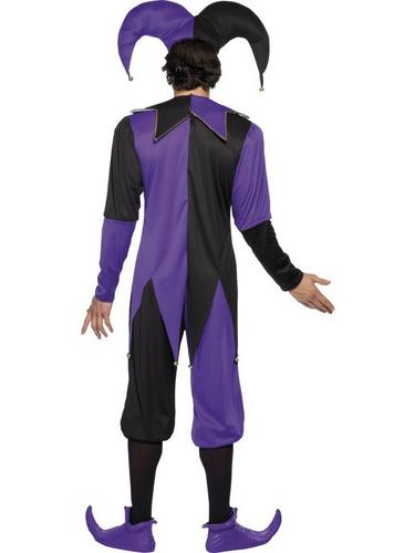 Medieval Jester Fancy Dress Costume Thumbnail 2