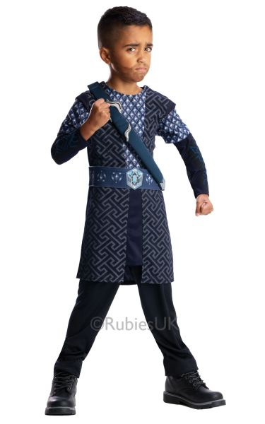 The Hobbit Childs THORIN Costume Thumbnail 1