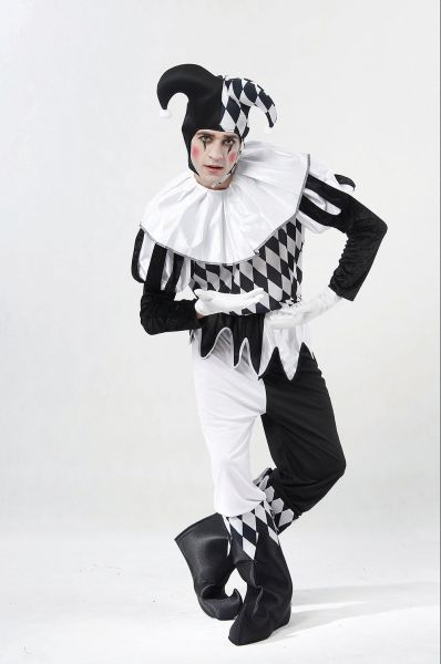 ADult Harlequin Male Costume