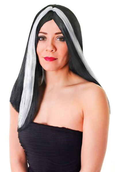 "Long 18"" Wig. Black / White Streak"