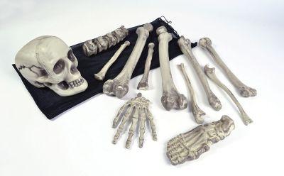 Bones In A Bag