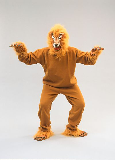 Adult Budget Lion costume Thumbnail 1