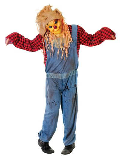 Adult Smiling Face Scarecrow Thumbnail 1