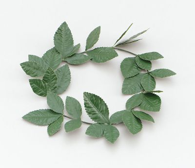 Green Laurel Leaf Headband Thumbnail 1