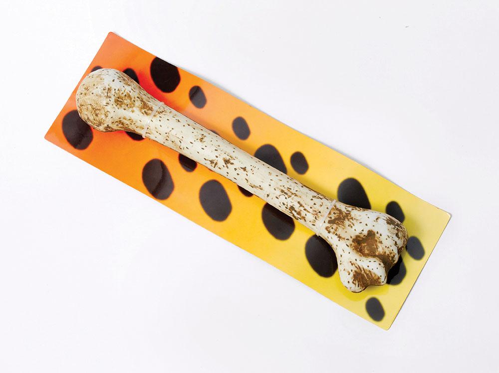 Barbarian Bone