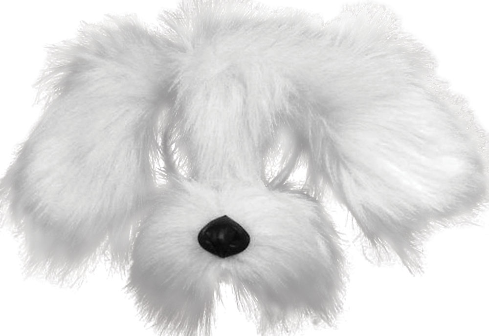 Shaggy Dog. White
