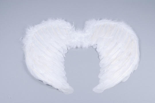 Mini White Feather Wings Thumbnail 1