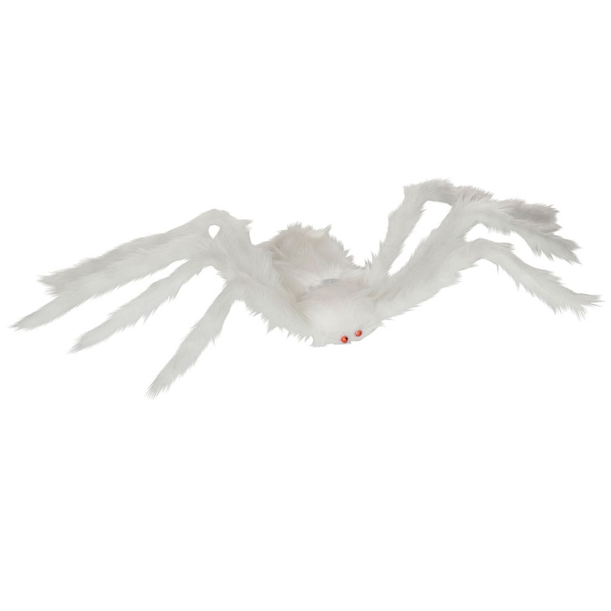 Hairy White Spider