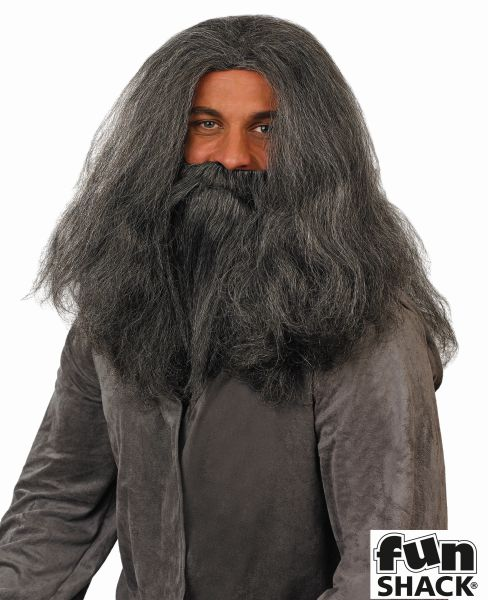 Mens Wizard Wig And Beard