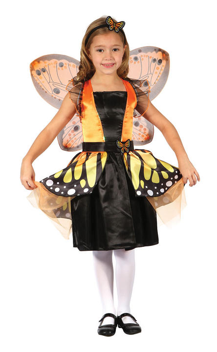 Girls Butterfly Fairy Costume  Thumbnail 1