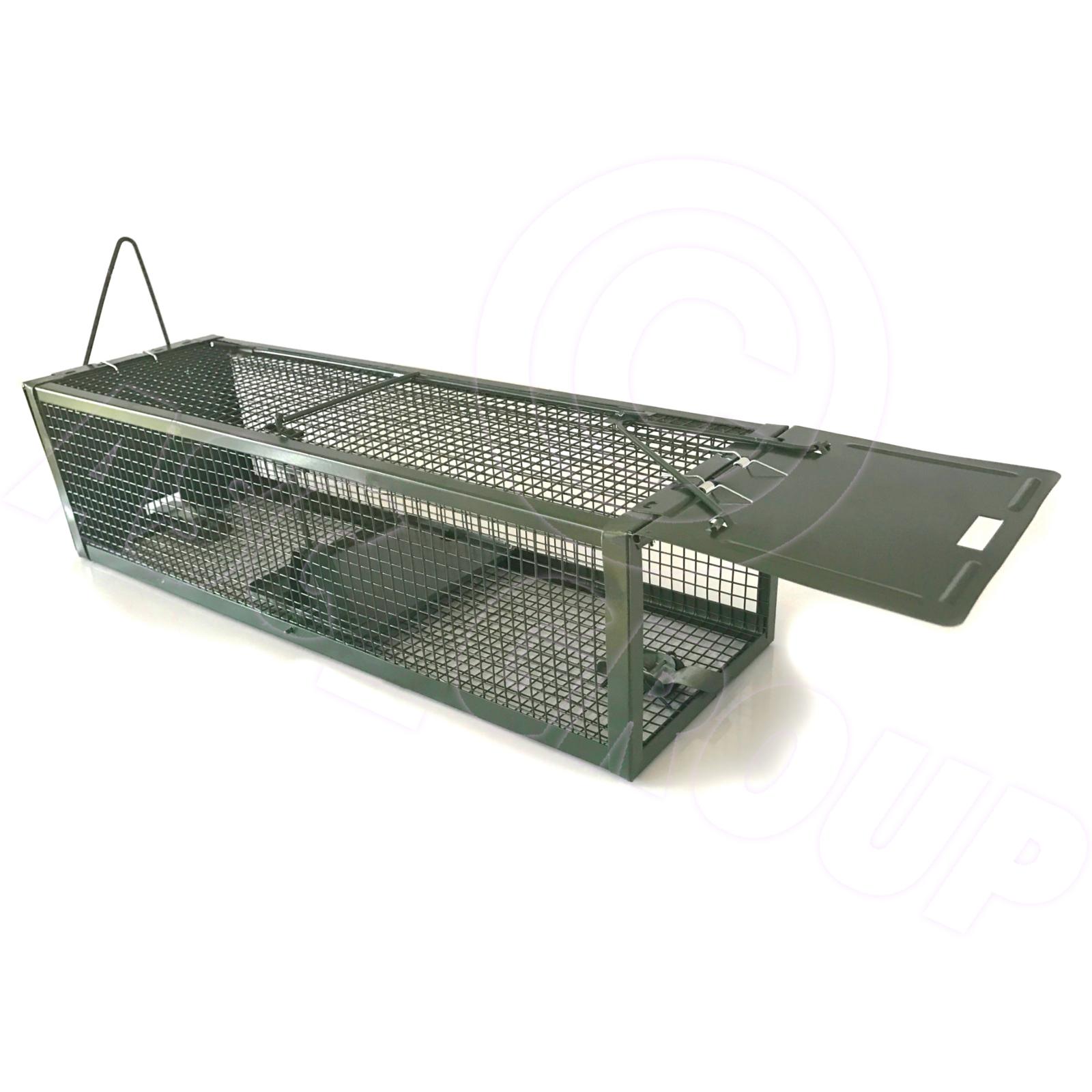 how to set a metal rat trap