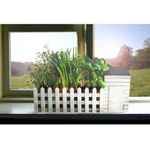 Indoor Allotment Gift Set Grow Herbs Indoors On Your Windowsill