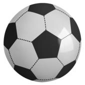 Giant Inflatable Football