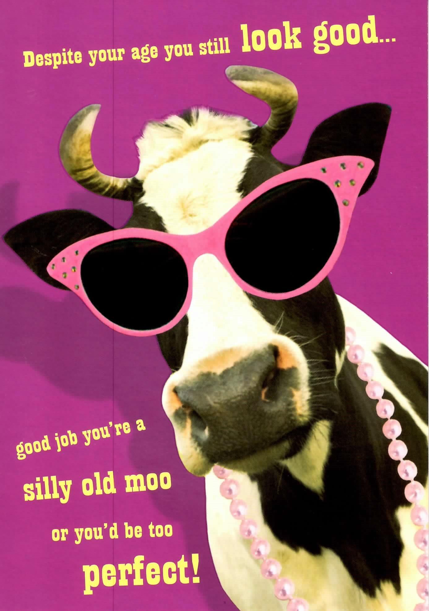 Funny Old Lady Birthday Cards Gangcraft Net