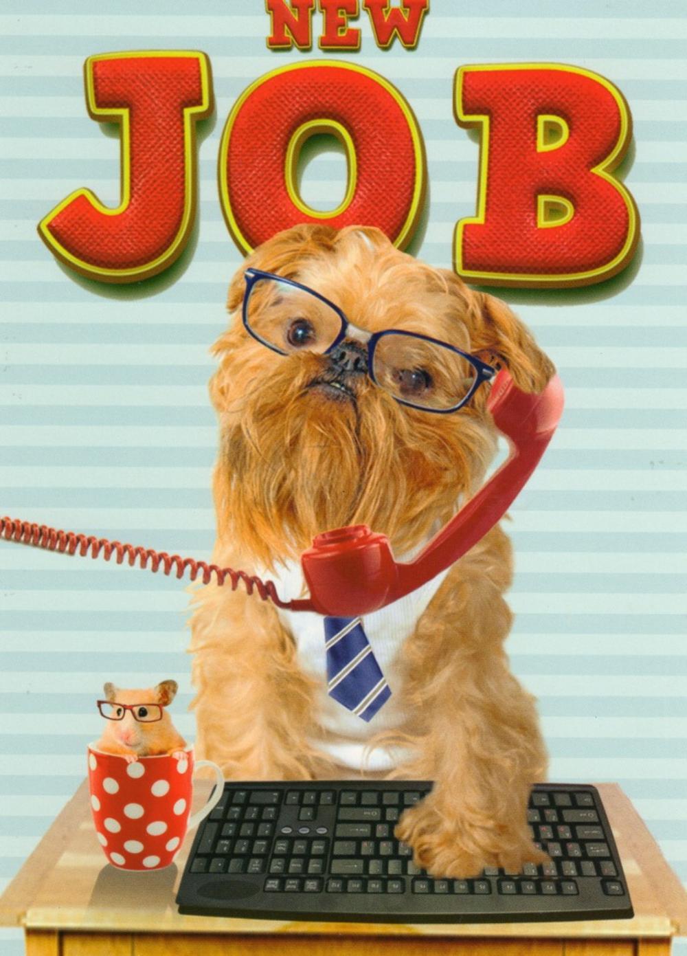 New Job Good Luck Greeting Card Cards Love Kates