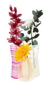Collapsible Vase for Bunch Flowers Reusable Stores Flat