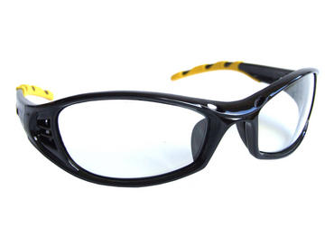 Florida Safety Glasses Clear 10 Pack