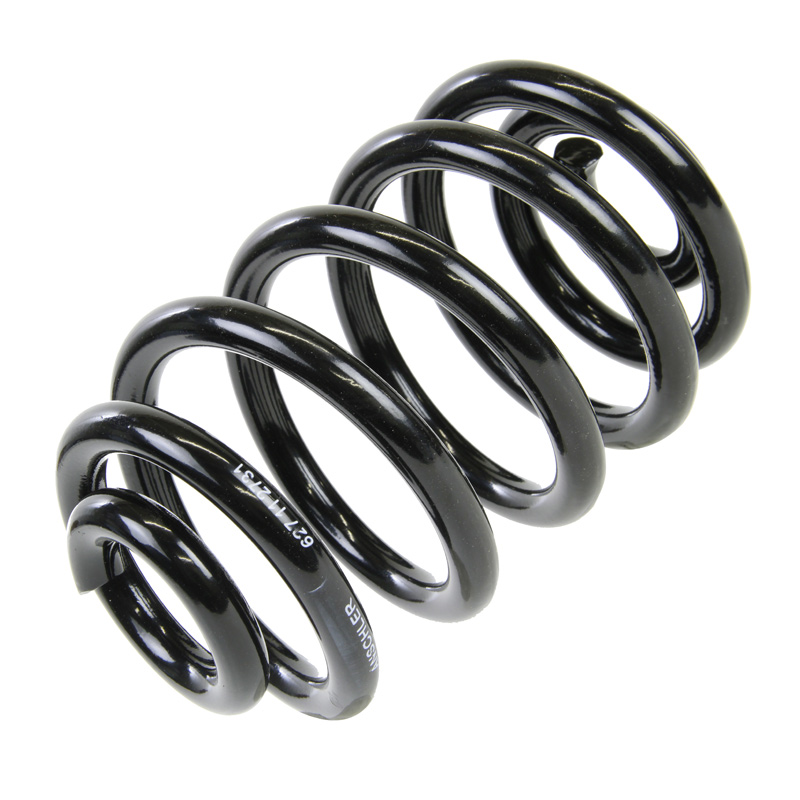 OE Replacement Rear Suspension Coil Spring Fits BMW X3