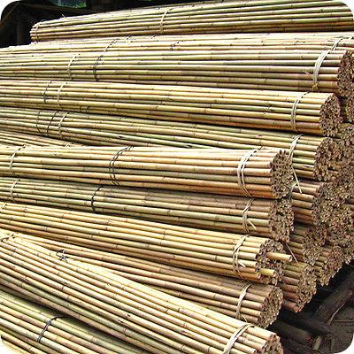 5ft extra fort r sistant professional bambou plant soutien - Jardin de bambou cannes ...