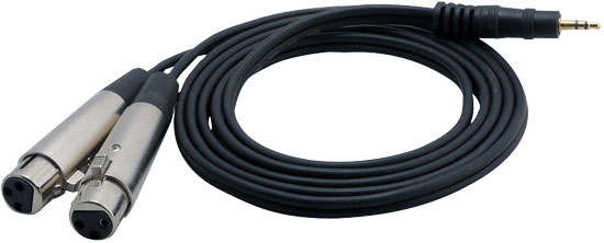 Pyle-Pro PCBL38FT6 6 Ft 12 Gauge 3.5mm Male To Dual XLR Female Cable