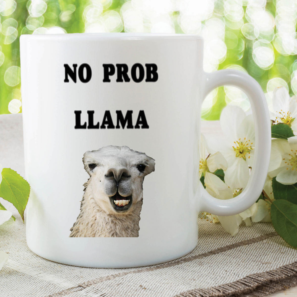 Funny Novelty Mugs Joke Adult Humour No Prob Llama Work Office Coffee WSDMUG614