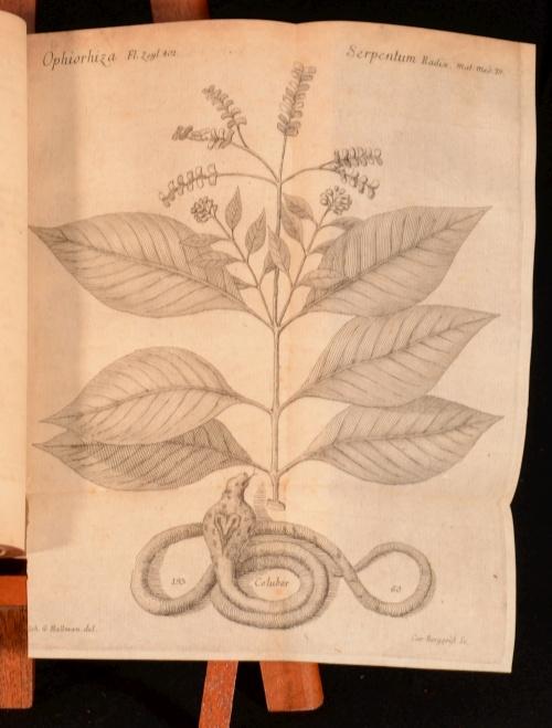 1749-Materia-Medica-Liber-I-De-Plantis-Caroli-Linnaei