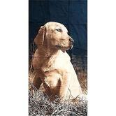 Light Weight Beach Or Bath Towel With Various Dog Design