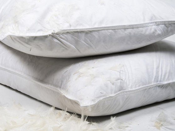 how to clean duck feather pillows